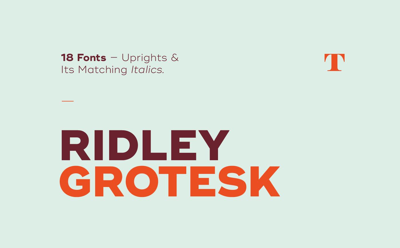 Ridley Grotesk Free Font / Tinkov